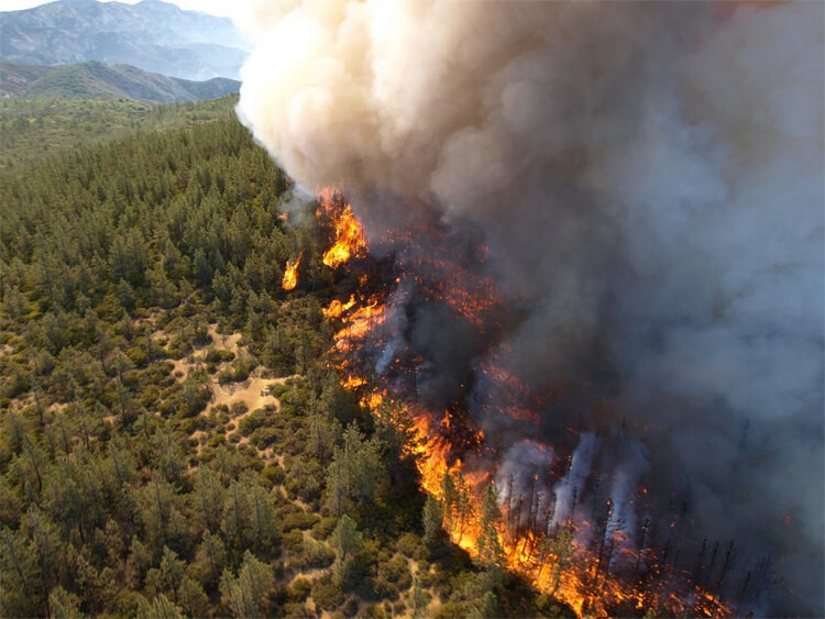 forest fire california climate change insurance crisis future timeline