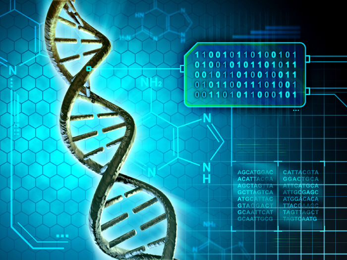 synthetic human genome 2026 2025
