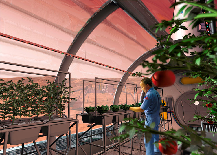 mars future food crops grown